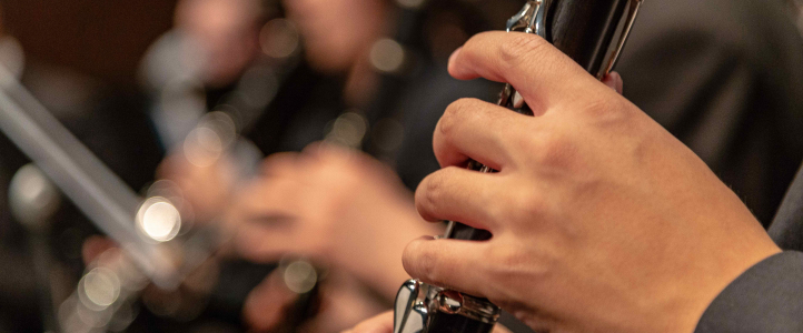 Clarinet Hands image