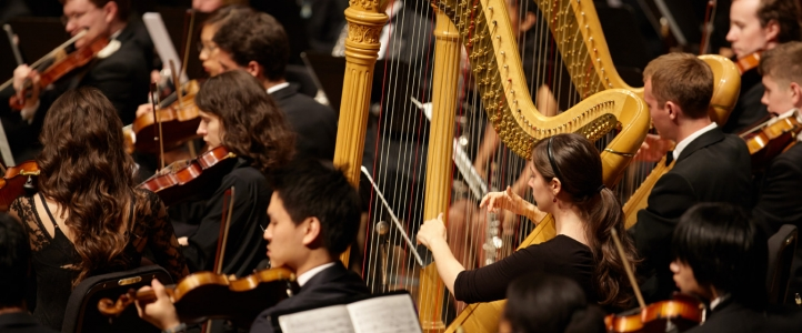 Harpists in the orchestra
