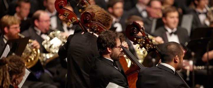 Orchestra bassists