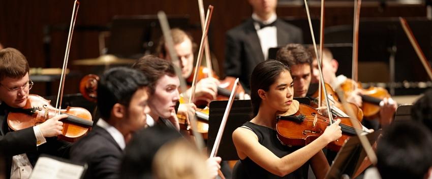 Orchestra musicians