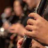 Clarinet Hands image
