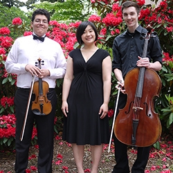 2013-14 UW Music chamber group Trio Andromeda