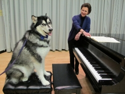 Dubs the UW's Husky mascot takes a piano lesson from Prof. Robin McCabe
