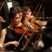 Orchestra string musicians