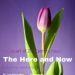 Here and Now poster image