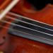 Violin Close Up (photo: Steve Korn)